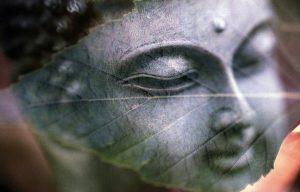 buddha-1279570_960_720